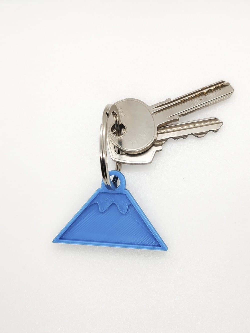 Biodegradable 3D printed keychain-Fuji