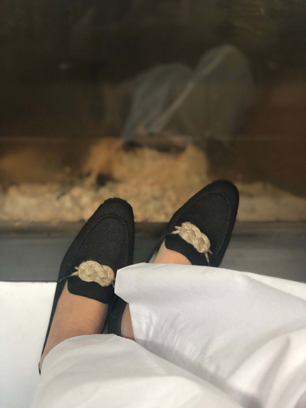 Vegan and sustainable shoes-Cheval