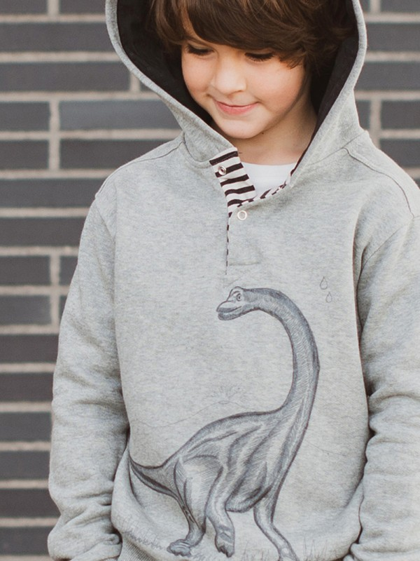Dinosaur organic cotton sweatshirt
